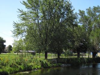 Mukwonago, Wisconsin - Photo Number 11